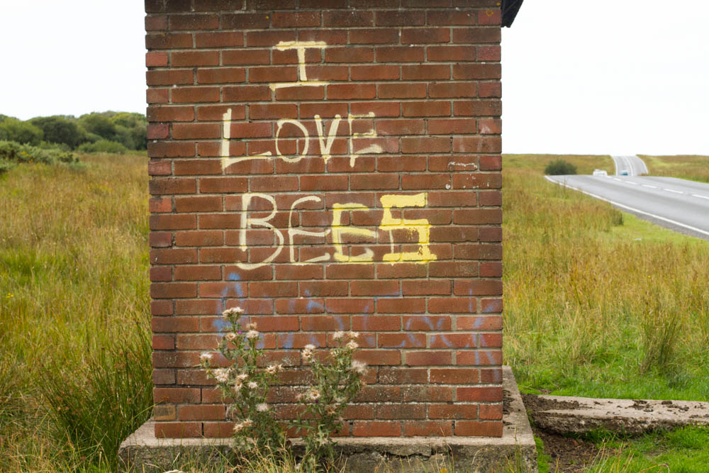 Bee sign sprayed on old bus stop on remote common to express their love and importance of bees Gower W Glamorgan Wales UK